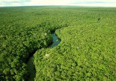 Projeto de mapeamento da Amazônia visa potencial geológico